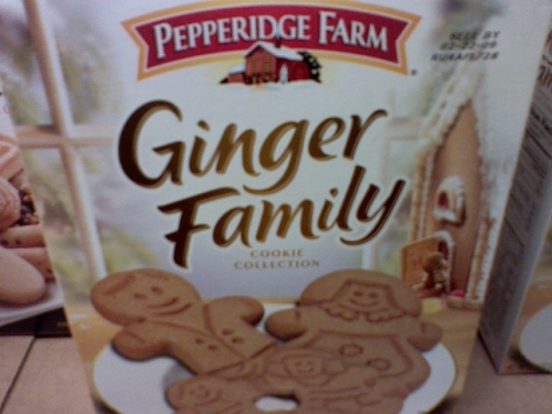 ginger-family